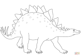 stegosaurus dinosaur coloring page free printable coloring pages