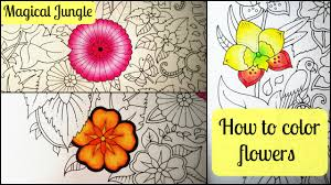 colour flowers magical jungle coloring book johanna