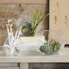 glass tabletop terrarium pbteen
