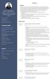 Sample Resume For Regional Sales Manager by Area Sales Manager Resume Samples Visualcv Resume Samples Database