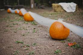 Fall Wedding Aisle Decorations - how to incorporate pumpkins in your fall wedding bride blog