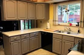 Spray Painters For Kitchen Cabinets Kitchen Best Paint To Use On Cabinets Rustic Kitchen Cabinets
