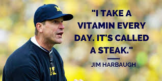 Jim Harbaugh Memes - jim harbaugh is the ron swanson of football imgur