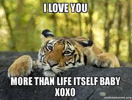I Love U Meme - i love you more than life itself baby xoxo confession tiger