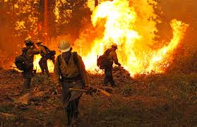 Wildfire Training by The Full Story Konp