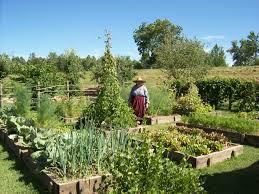 parkway partners april nd saturday kitchen gardens garden trends