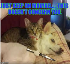 Moving Memes - just keep on moving this doesn t concern you meme