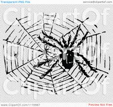 spider transparent background clipart of a retro vintage black and white hairy spider and web