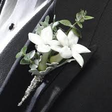 Stephanotis Flower The 25 Best Stephanotis Wedding Flower Arrangements Ideas On
