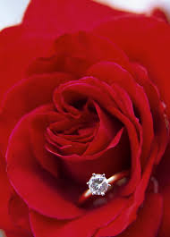 diamond roses mined for valentine u0027s day