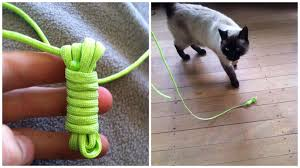 diy cat toys you can make from household items 1 million women