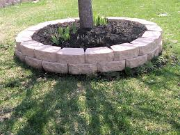 landscaping ideas around trees pictures gardens and landscapings