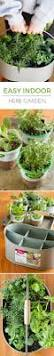 17 best images about herb gardens on pinterest container