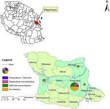 Map Of Tanzania Administrative Map Of Bagamoyo District Coastal Region Of
