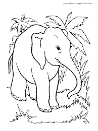 jungle elephant color free printable coloring sheets kids