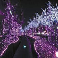 purple outdoor lights purple lights