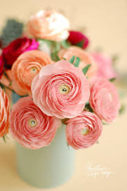 68 best paper flowers images on pinterest paper flowers and