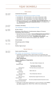 Senior Auditor Resume Sample by It Executive Resume Samples Visualcv Resume Samples Database