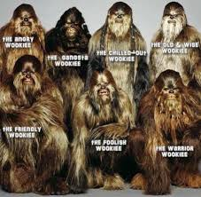 Ewok Memes - wookies facebook picture tagging meme digital citizen