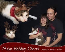 awkward pet holiday photos google search zany creative