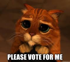 Vote For Me Meme - please vote for me sad cat shrek meme generator