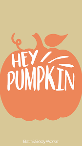 pumpkin phone wallpaper hey pumpkin