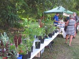 permaculture cairns expo day permaculture cairns