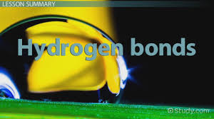 hydrogen bonds definition types u0026 formation video u0026 lesson