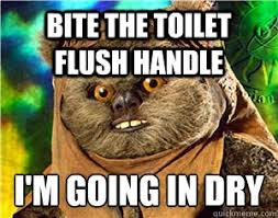 Ewok Memes - evil ewok memes memes pics 2018