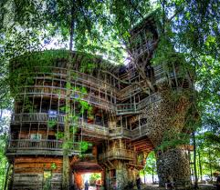 affordable tree service crossville tn the largest tree house in the world in tennessee photo credit