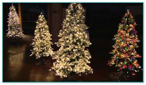 bethlehem lights lights slim christmas tree 2