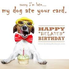 best 25 funny birthday message ideas on pinterest funny