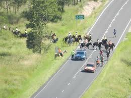 bentley australia bentley blockade updates gasfield free northern rivers