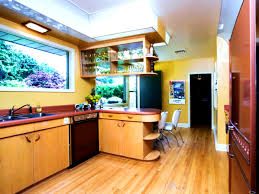 50s Kitchen Cabinets Bathroom Tasty Retro Kitchen Cabinets Pictures Ideas Tips From