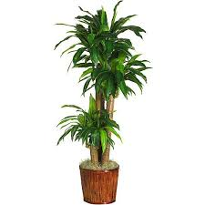 Artificial Plants Home Decor Best 25 Silk Plants Ideas On Pinterest Artificial Plants Boho