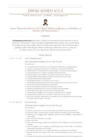 Intelligence Analyst Resume Examples by Senior Financial Analyst Resume Samples Visualcv Resume Samples