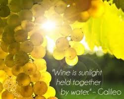 Wapiti Ridge Wine Cellars - the best new pa wine festivals in the pittsburgh region wine