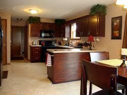 Stain Oak Kitchen Cabinets Kitchen Best Gel Stain Kitchen Cabinets Finished Gel Stain Over