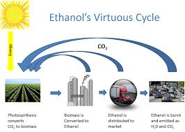 how is made how is ethanol made biofuels association of australia