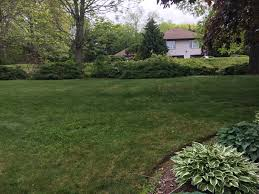 landscaping connecticut and rhode island ellinwood landscaping