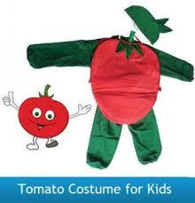 buy tomato costume for kids fancy dress costume vegetable