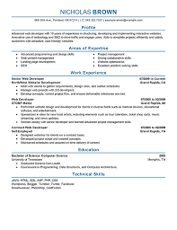 Self Employed Resume Sample by Download Web Developer Resume Sample Haadyaooverbayresort Com