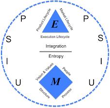 an inside look at holacracy organizational physics by lex sisney