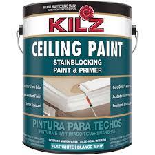 ceiling paint walmart com