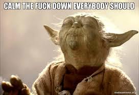 Calm The Fuck Down Meme - calm the fuck down everybody should yoda says ctfd make a meme