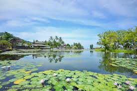 candidasa lotus lagoon in bali central landmark in candidasa