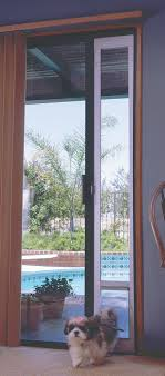 Patio Door With Pet Door Built In Sliding Patio Door With Pet Door Built In Handballtunisie Org