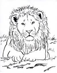 printable 21 lion head coloring pages 7584 lion head coloring