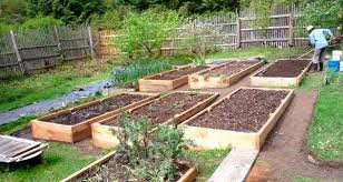 How To Plant A Vegetable Garden In Your Backyard by Eartheasy Bloghow To Build A Raised Garden Bed On Sloping Uneven