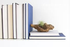 Book End Driftwood Bookend Stacy Risenmay
